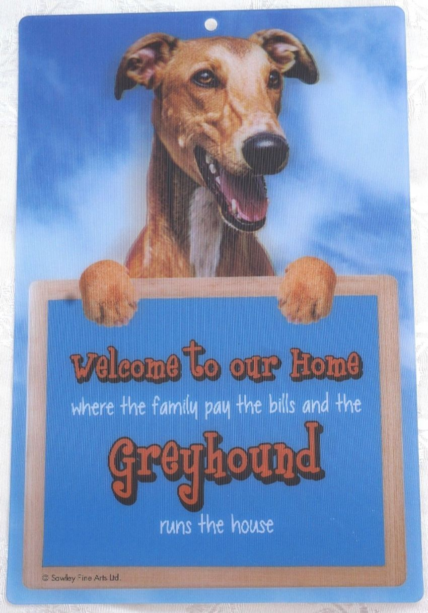 GREYHOUND 3D DOG WELCOME SIGN STUNNING EYE CATCHING 23CM X 15CM DURABLE DOG SIGN